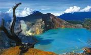Rebecca Tour - Ijen Crater Tour